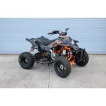 PRO MXR 100cc